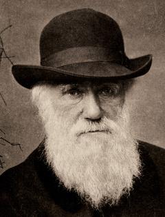 Чарльз Роберт Дарвин