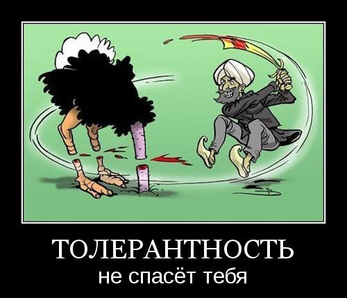 Толерантность не спасёт тебя!