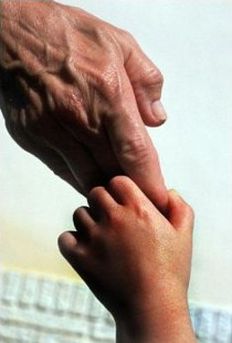 Hands of a father and his son